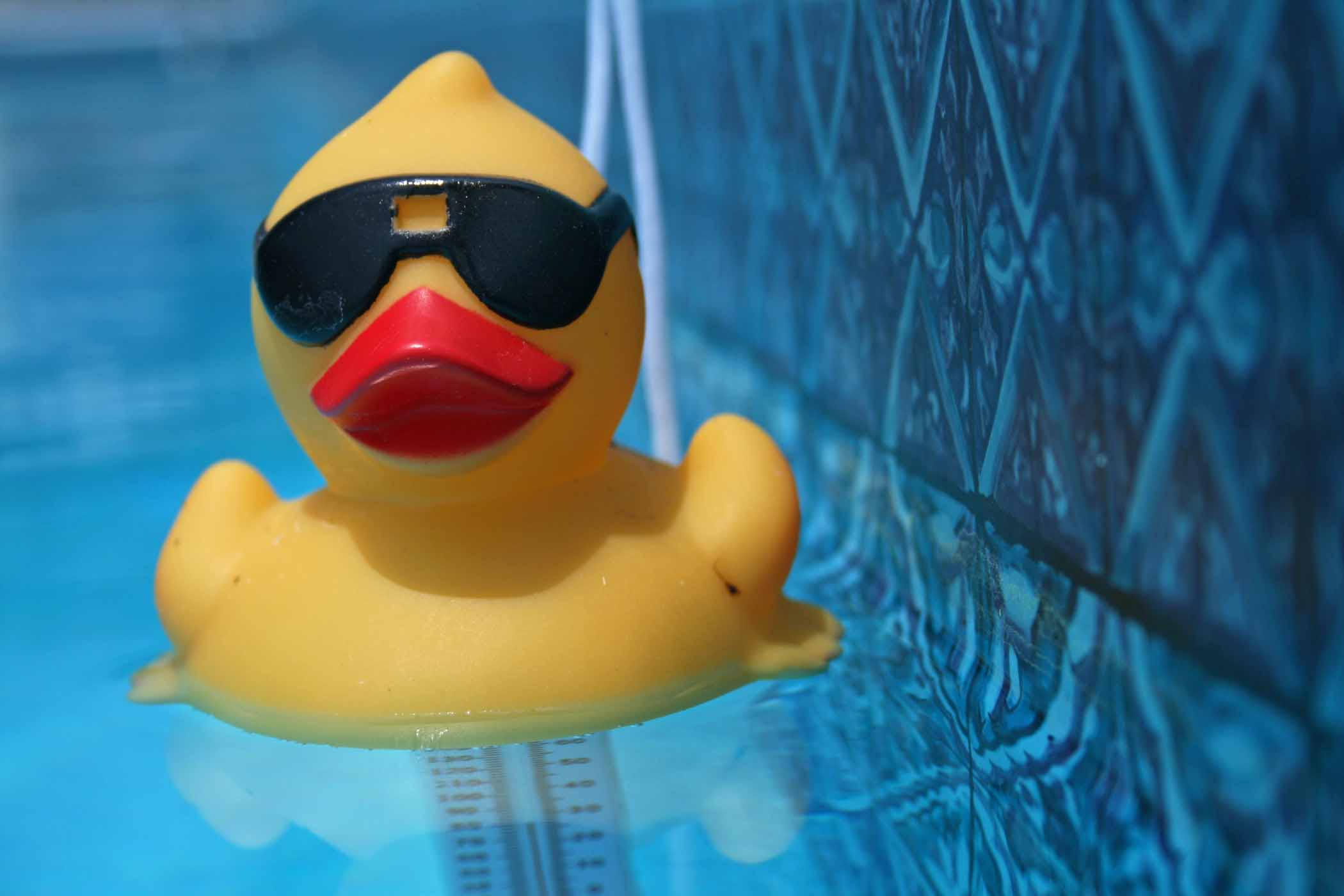 The Psychology Underlying The Power Of Rubber Duck Debugging Press Up